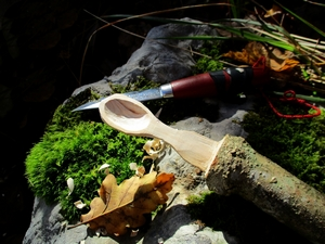 cuillere  fourchette frêne unis vers nature stage bushcraft immersion pleine nature jura